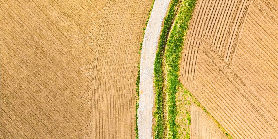 An Eye in the Sky – Finding the Real Arable Area and Field Sizes