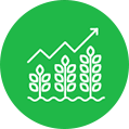 Plant Population Analysis